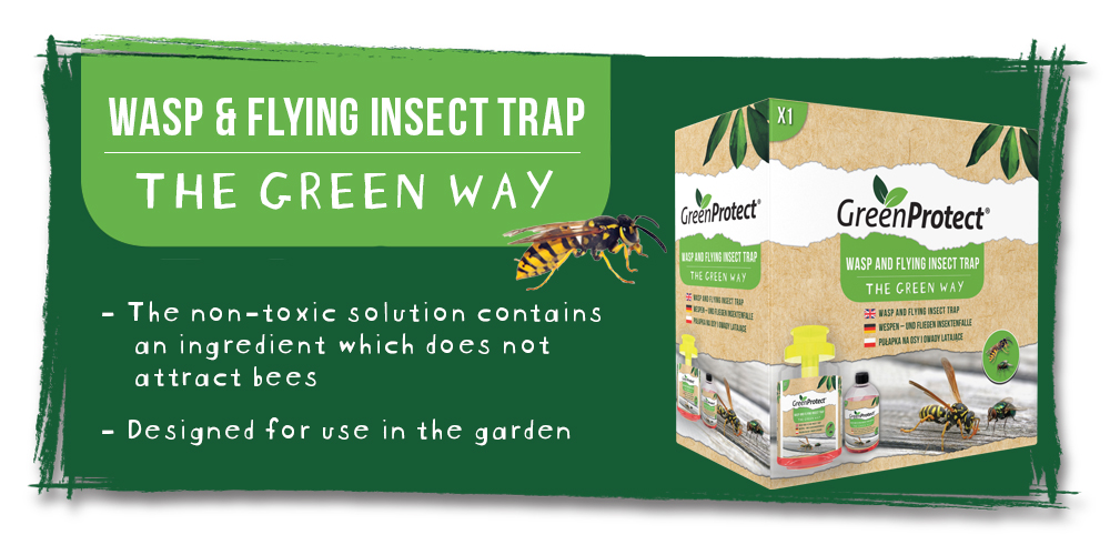 Green Protect Wasp Trap EN
